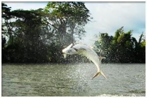 Fishing in Lake Granada