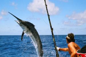 San Juan Del Sur Deep Sea Fishing